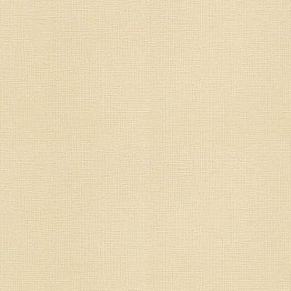 WVC627 (旧)WVC518 東リ 壁紙/クロス 住まいの壁紙