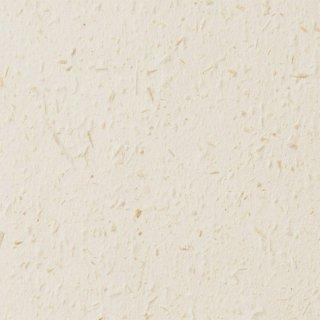 SG5025 サンゲツ 壁紙/クロス 和紙