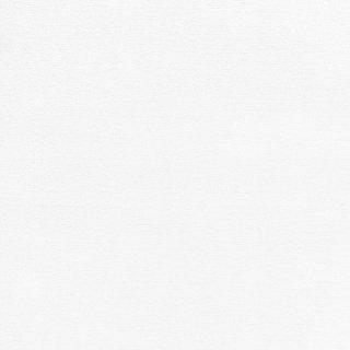 WF6001 東リ 壁紙/クロス(不燃認定壁紙1000)