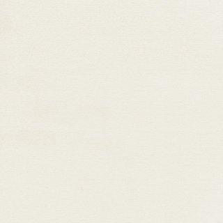 WF6003 東リ 壁紙/クロス(不燃認定壁紙1000)