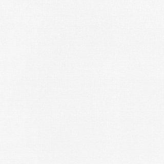 WF6004 東リ 壁紙/クロス(不燃認定壁紙1000)