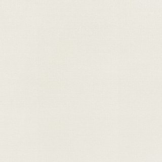 WF6006 東リ 壁紙/クロス(不燃認定壁紙1000)
