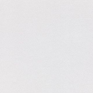 WF6015 東リ 壁紙/クロス(不燃認定壁紙1000)