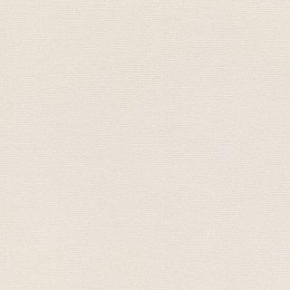 WF6016 東リ 壁紙/クロス(不燃認定壁紙1000)