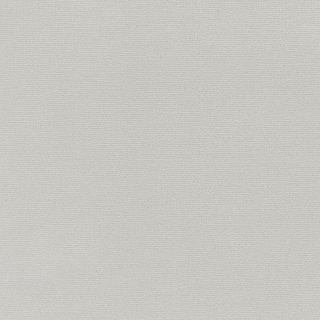 WF6017 東リ 壁紙/クロス(不燃認定壁紙1000)