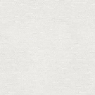WF6018 東リ 壁紙/クロス(不燃認定壁紙1000)