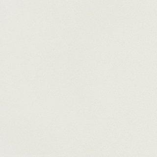 WF6029 東リ 壁紙/クロス(不燃認定壁紙1000)